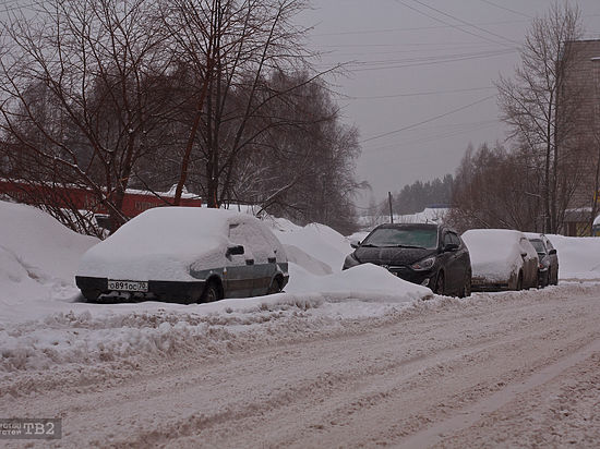ВТомске выпало рекордное за18 лет количество снега