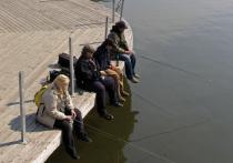Нерестовый запрет в Подмосковье начнет действовать с 10 апреля